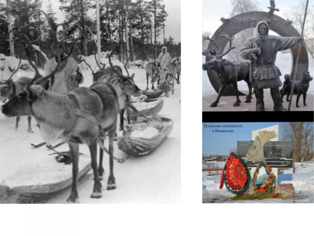 Олени в РККА в годы Великой …