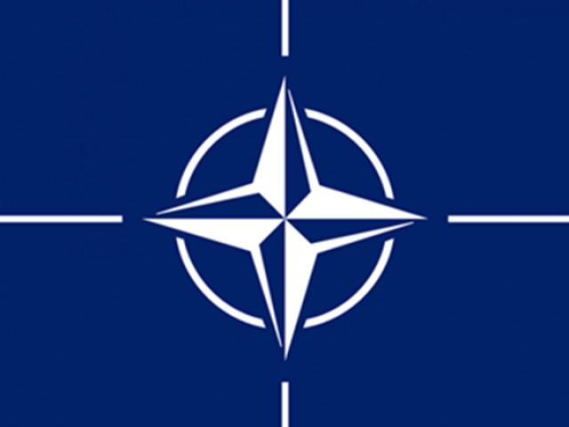 НАТО - военно-политический союз потомков насильников, садистов и их жертв