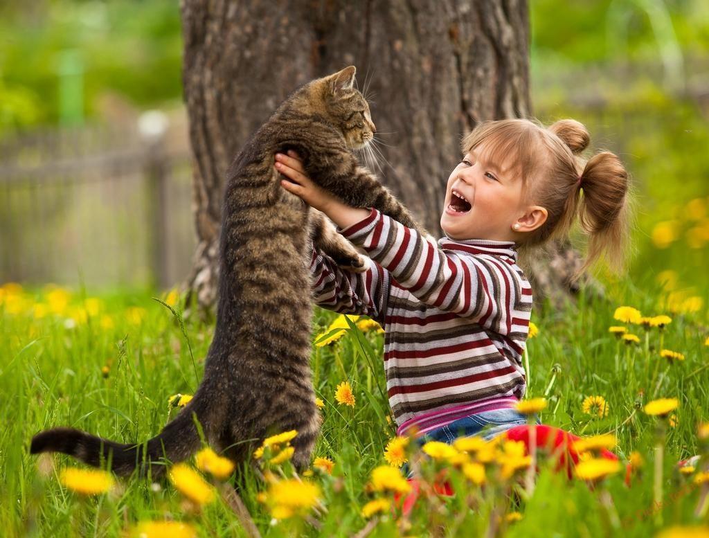Смешные животные на природе картинки для детей, поздравление днем