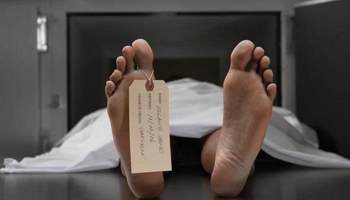 Зомби-болезни, которые пугают ученых наяву и по-настоящему болезнь,зомби,Пространство,рождество,смерть