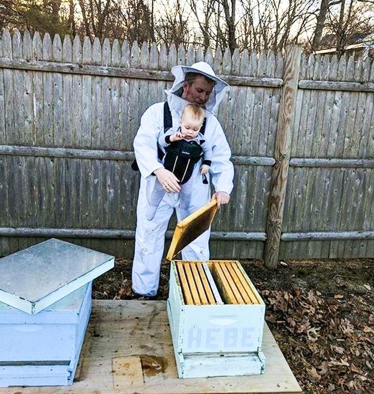 Вечер стихи, прикольные картинки про пчеловодов