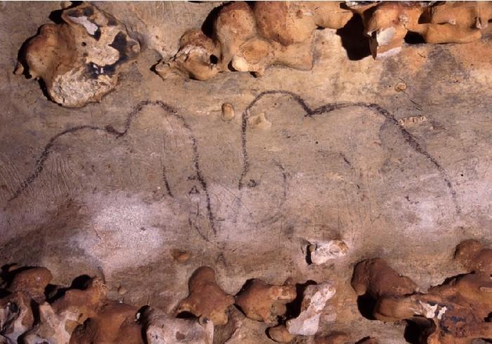 Мамонты в изобразительном искусстве древнего человека мамонт, первобытные люди, рисунки на стенах, палеолит, ледниковый период, пещера, каменный век, длиннопост