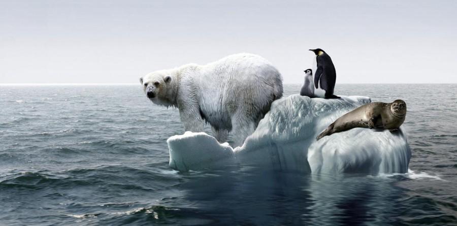 К 2100 году потепление стане…