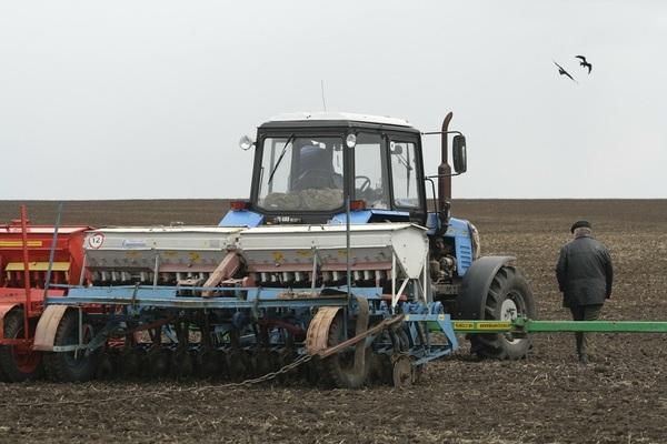 Татарстан в 2019 г планирует направить на посевную 25 миллиардов рублей