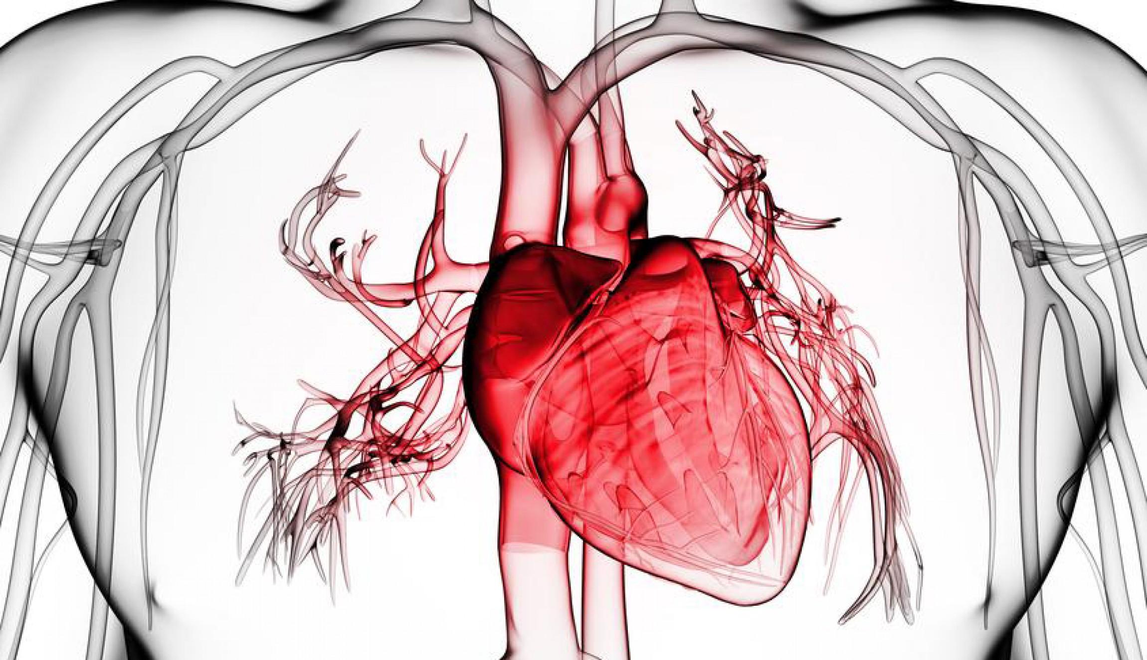 Инфекции, от которых страдает сердце