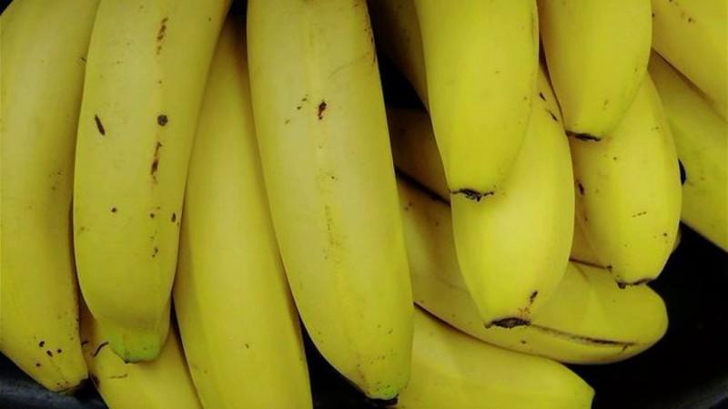 Бывает же такое... Сотни ящиков бананов бесплатно унесли домой жители Владивостока