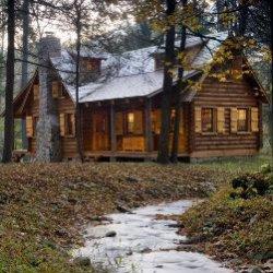 Постройте свою хижину в лесу... ТЕСТ