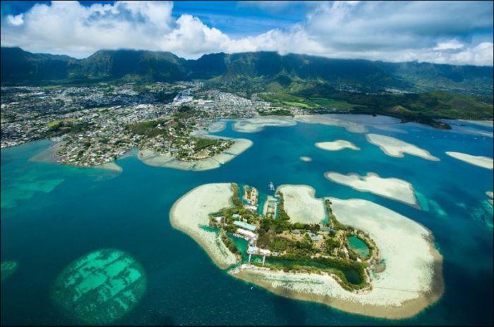 5 островов мечтающие об иммигрантах