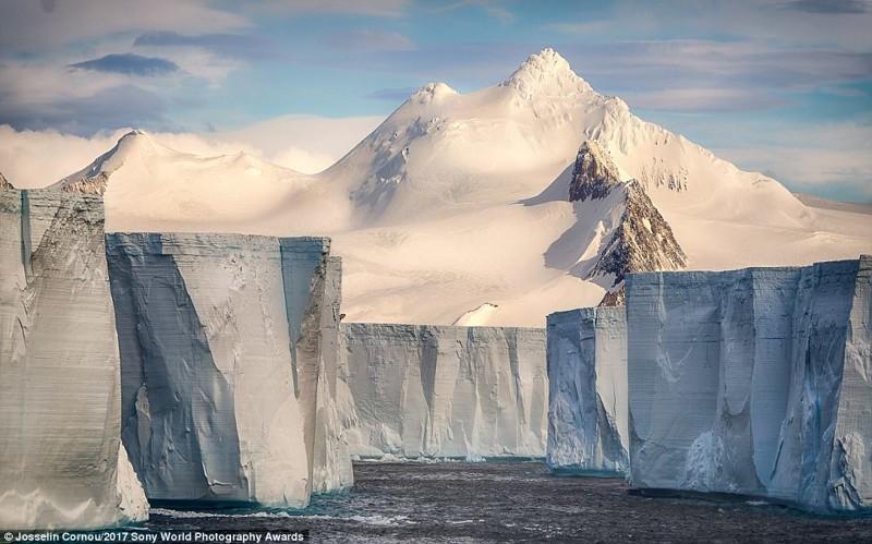Белая стена. Группа айсбергов в Антарктике искусство, конкурс, красота, фото