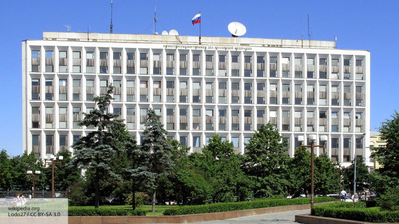 В МВД заподозрили одного из богатейших людей Молдавии в выводе из РФ 37 миллиардов рублей
