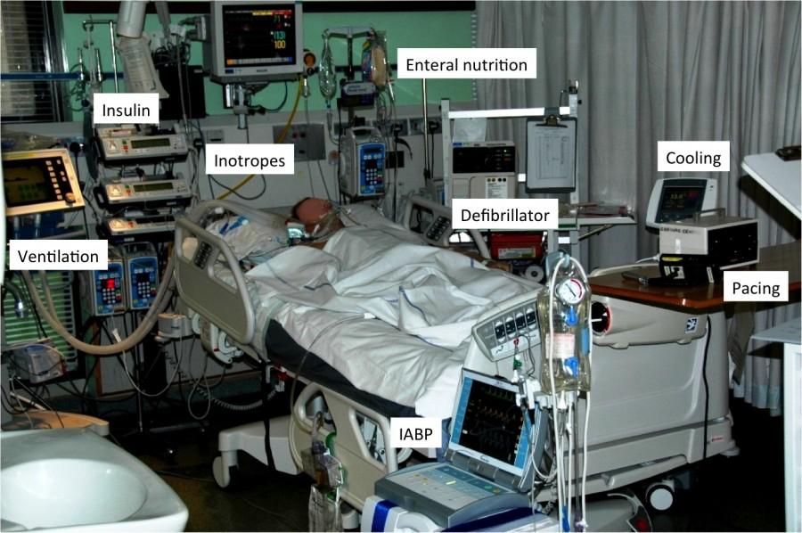 Легализация эвтаназии в России донорство,медицина,трансплантология