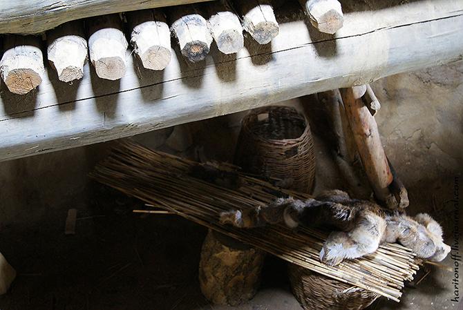 Экскурсия в жилище каменного века
