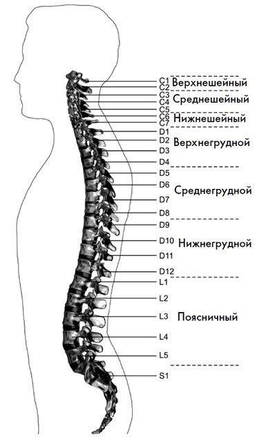 Лечебные движения для снятия головной боли