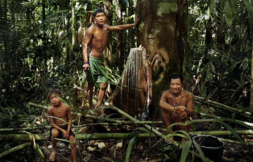 Пирахи— племя, которое неспит. Ипочему пообщавшись сними миссионер стал атеистом