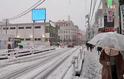 Снегопад парализовал движение в Токио