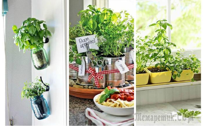 Зеленый декор на кухне: 20 домашних огородов, на которые стоит взглянуть