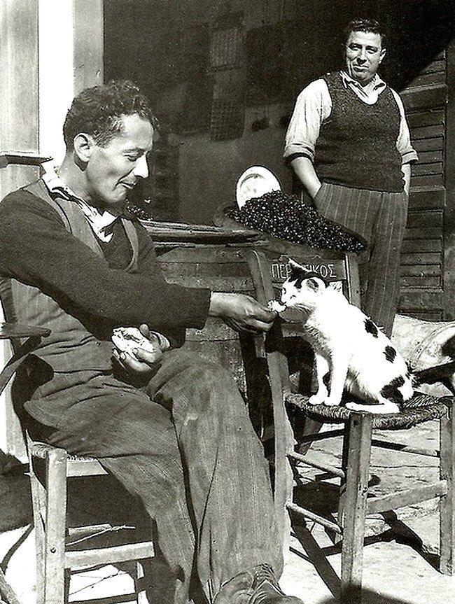 Уличная сценка. Двое мужчин и кошка. Весь Мир в объективе, ретро, старые фото
