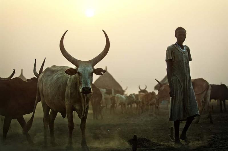 Под машинку африка, обычаи, первая брачная ночь, свадьба, традиции