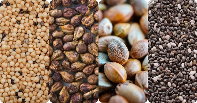 самые полезные семена и орехи