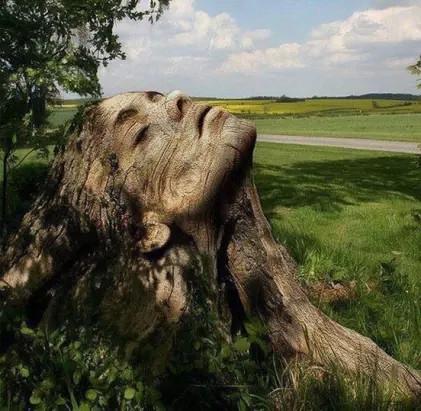 Вырезано из старого дерева!