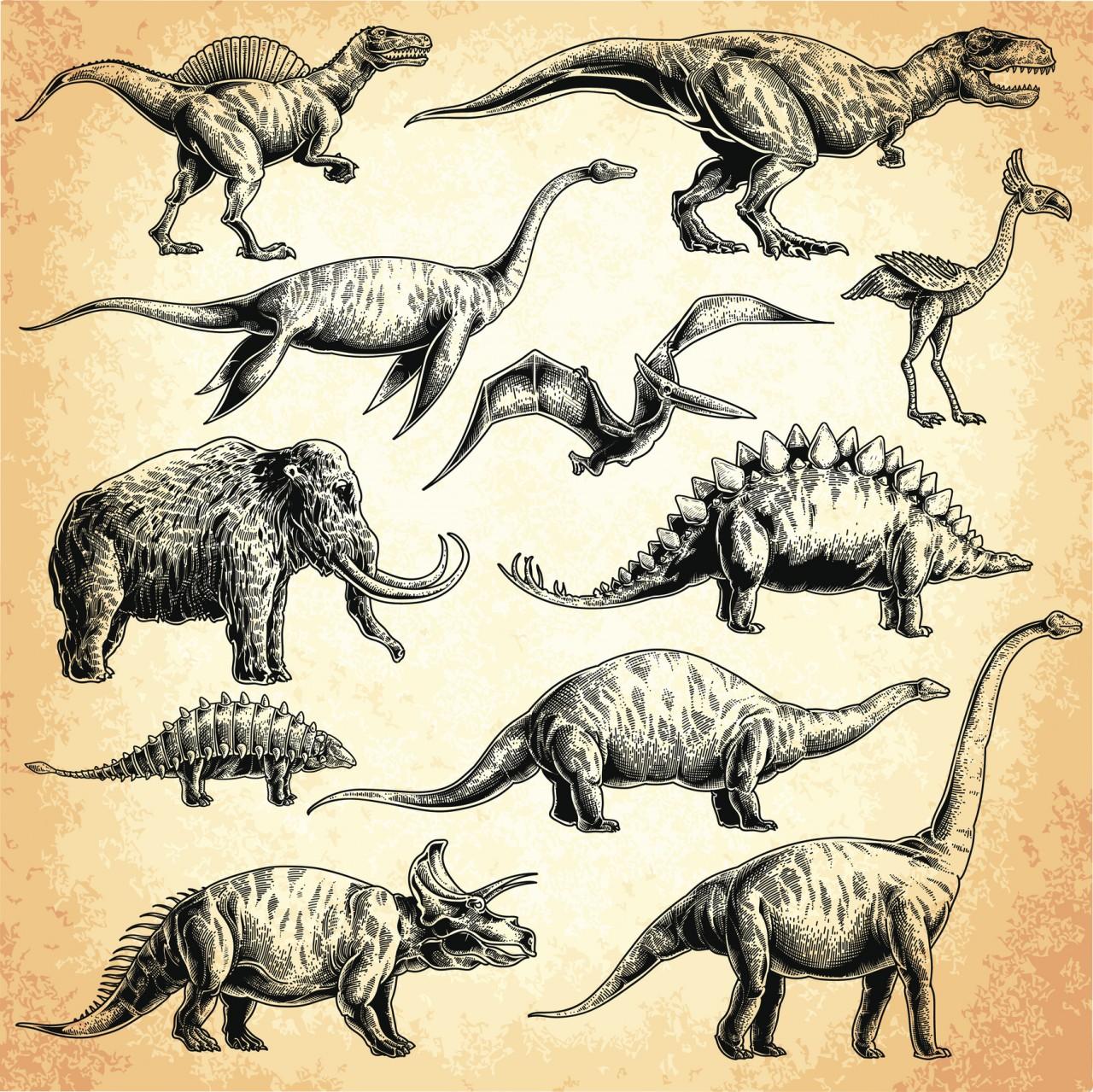 Все виды динозавров и их картинки