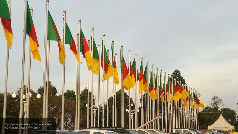 Экономист Дудчак предсказал рост товарооборота с Камеруном по мере стабилизации в ЦАР