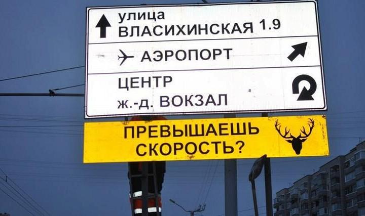 В России нашли знаки, называющие водителей баранами