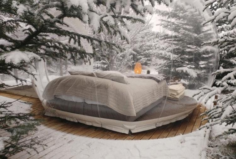В Исландии можно спать в таких ″пузырях″ и смотреть на лес и северное сияние