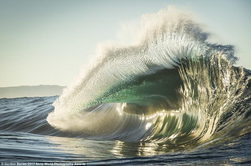 Глазами серера. Большая волна у юго-западного побережья Австралии искусство, конкурс, красота, фото