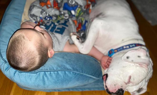 Ребенок по утрам просыпался на полу. Родители установили камеру и посмотрели, что происходит ночью Культура