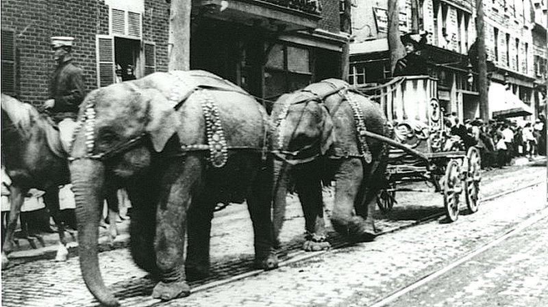 Парад слонов на бульваре Сен-Лоран, Монреаль, Канада. около 1910 года. Весь Мир в объективе, ретро, старые фото