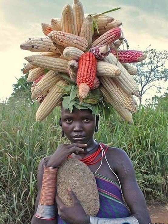 Африканские смешные картинки