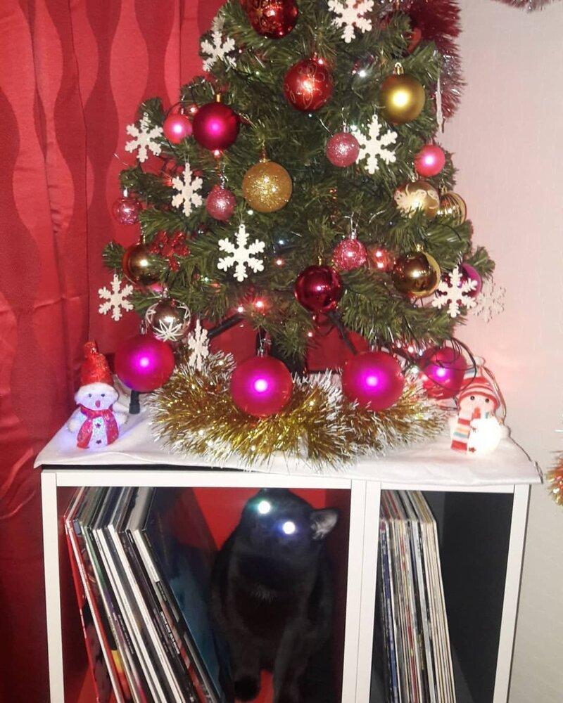 В этом году мини-ёлка, но всё равно кто-то пытается на нее залезть елка, игрушки, кот, новый год, разбой