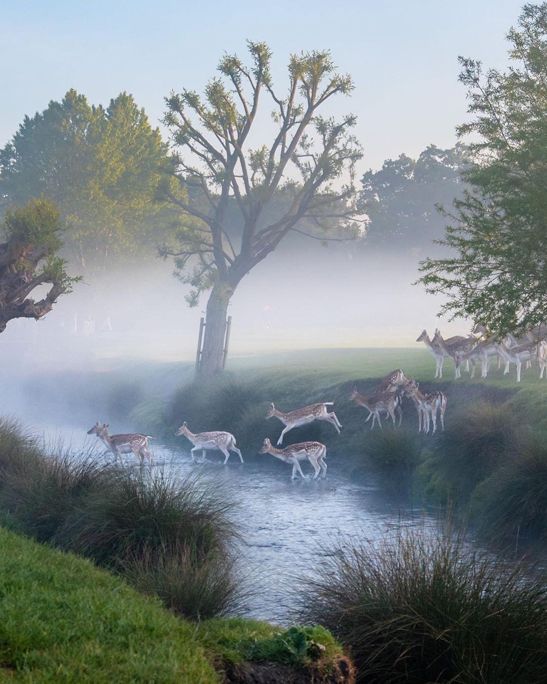 Красивая природа на снимках Кэт Готард природа