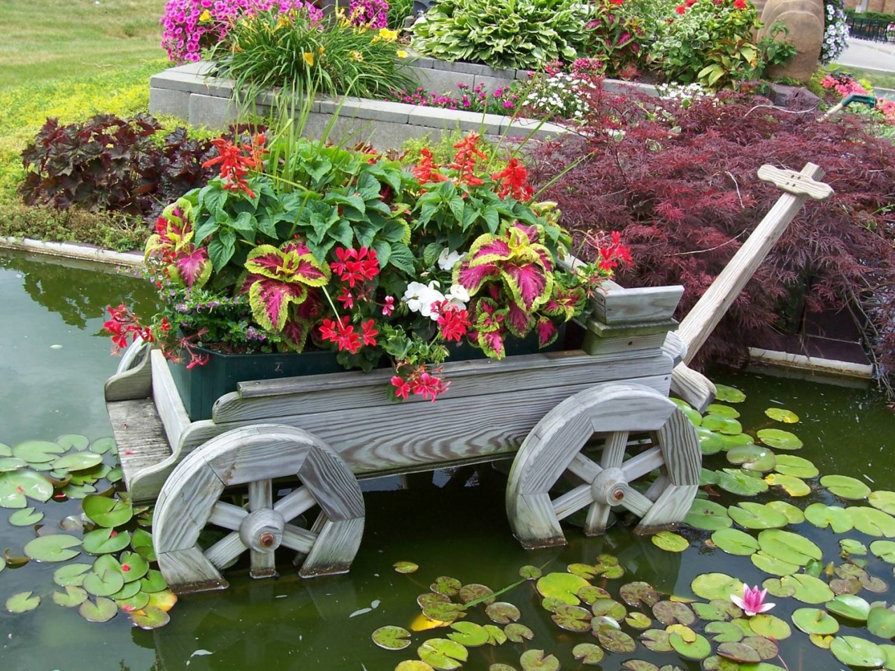 отделении оформление сада своими руками фотографии нем есть
