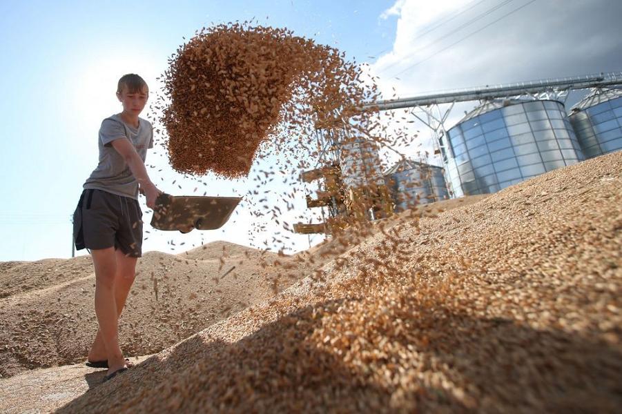 Россия захватывает мировой рынок зерна. Кое-что о новой экономической политике
