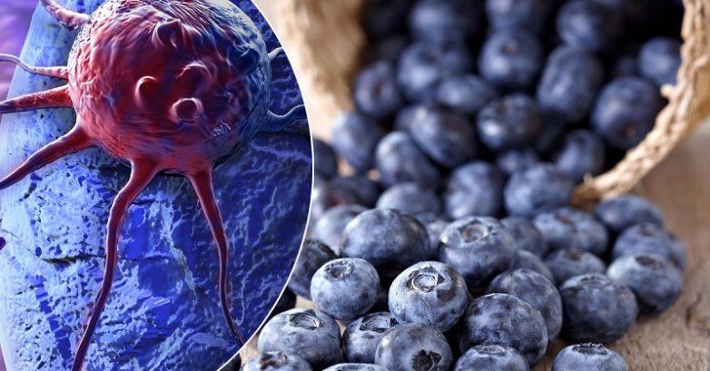 10 продуктов для профилактики онкологических заболеваний