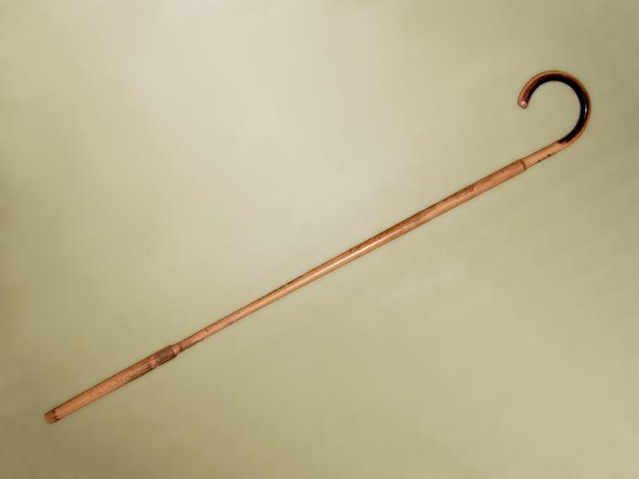 Трость из малаккского тростника, современная реплика. /Фото: wikipedia.org