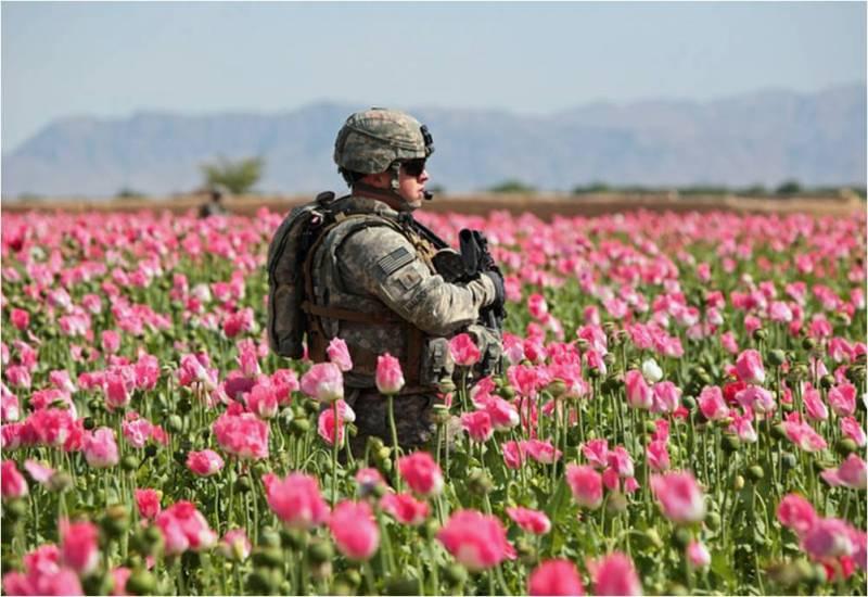Война спецслужб: «кокс» в обмен на «герыч»