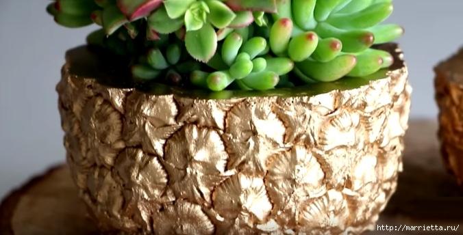 Креативное кашпо из ананаса (1) (676x344, 156Kb)