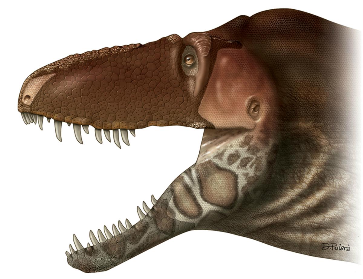 Предок тираннозавра показал необычную эволюцию и шестое чувство древних ящеров