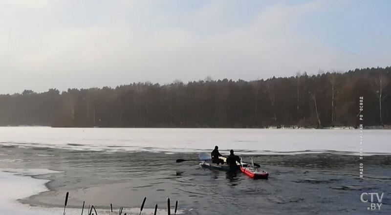 В Дроздах спасли лебедя, который вмерз в лед