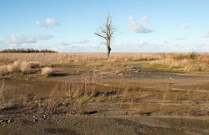 Раны этой земли еще долго не затянутся. Фото: Ollvler Saint Hilaire.