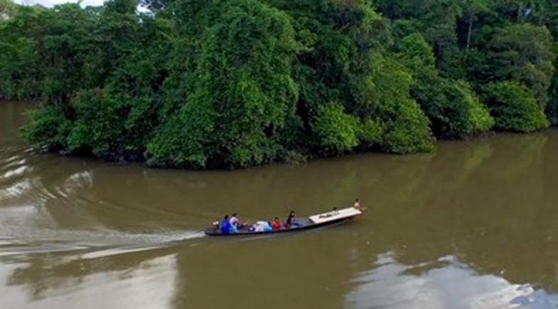 Крокодилы и не только: самые опасные реки в мире мир,реки,турист