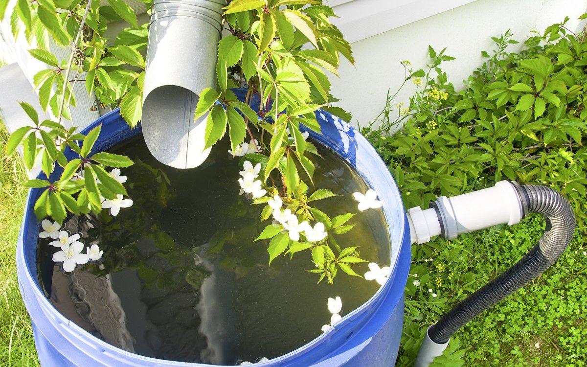 Сбор дождевой воды – реальная экономия сил, средств и времени