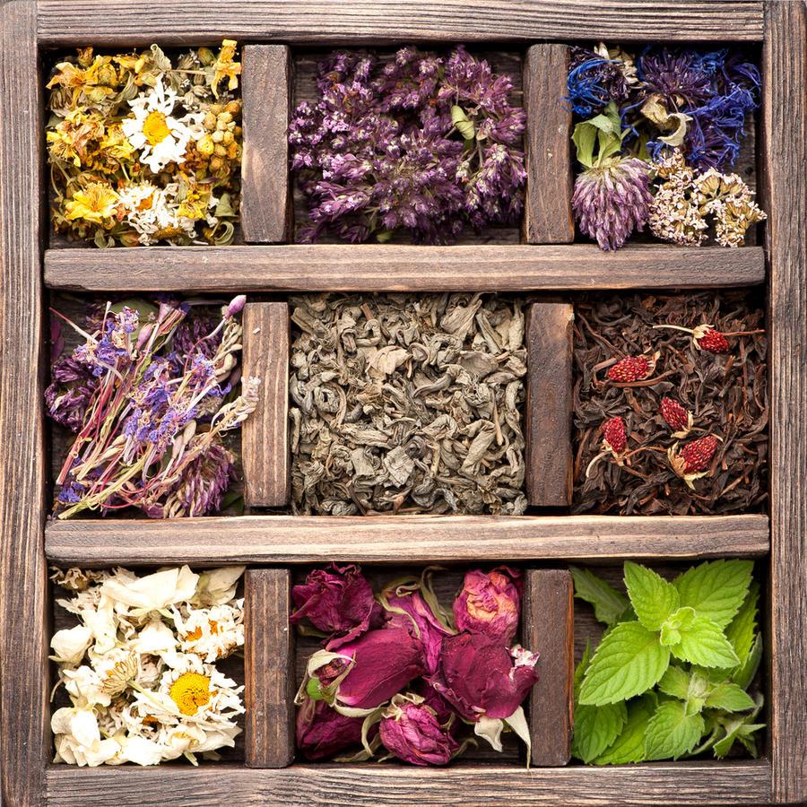 Как украсить свой дом, используя засушенные листья и цветы декор,для дома и дачи