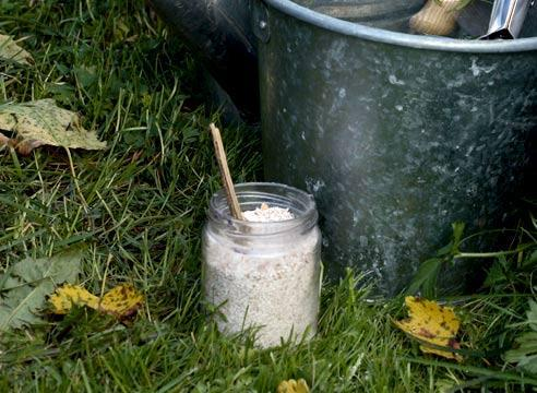 Если почва кислая: советы профессионала