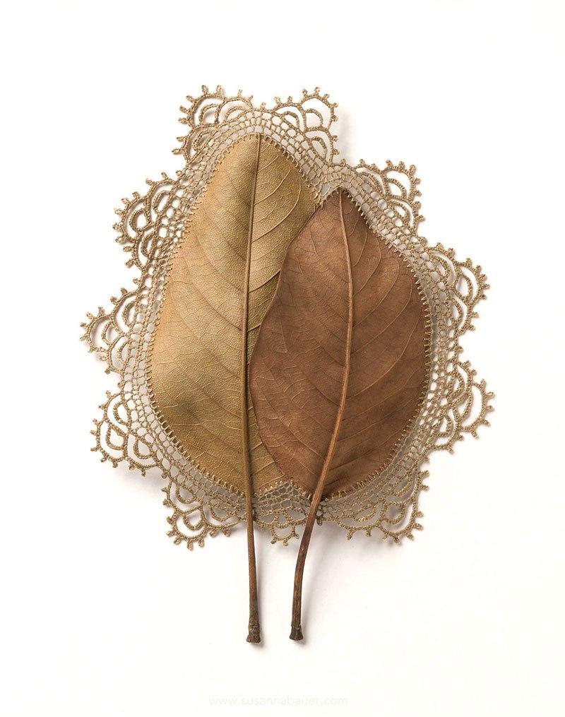 Необычное хобби: вязание крючком на опавших листьях