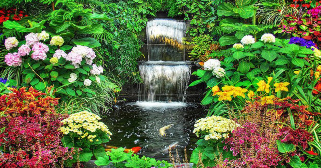 6 самых красивых цветов, которые украсят ваш осенний сад