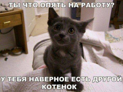 Свежий выпуск фото-приколов …